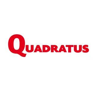 Integration Quadratus